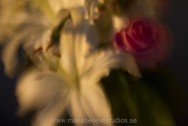 Kreativ fotografi