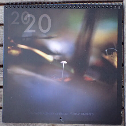 Kalender 2020 framsida